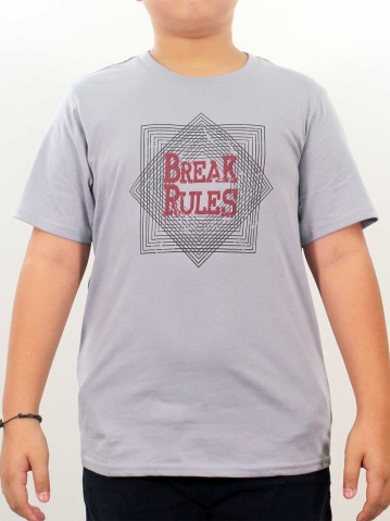 BOYS BREAK RULES GRAPHIC TEE IN LIGHT GREY