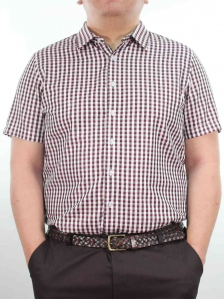 HARRIS SHORT SLEEVE CHECK SHIRT IN PINK