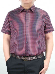 HARRIS SHORT SLEEVE CHECK SHIRT IN RED