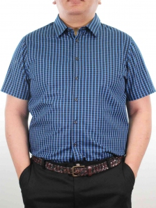 HARRIS SHORT SLEEVE CHECK SHIRT IN ROYAL