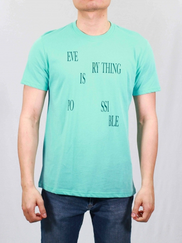 MEN EVERYTHING IS POSSIBLE GRAPHIC TEE IN LIGHT GREEN